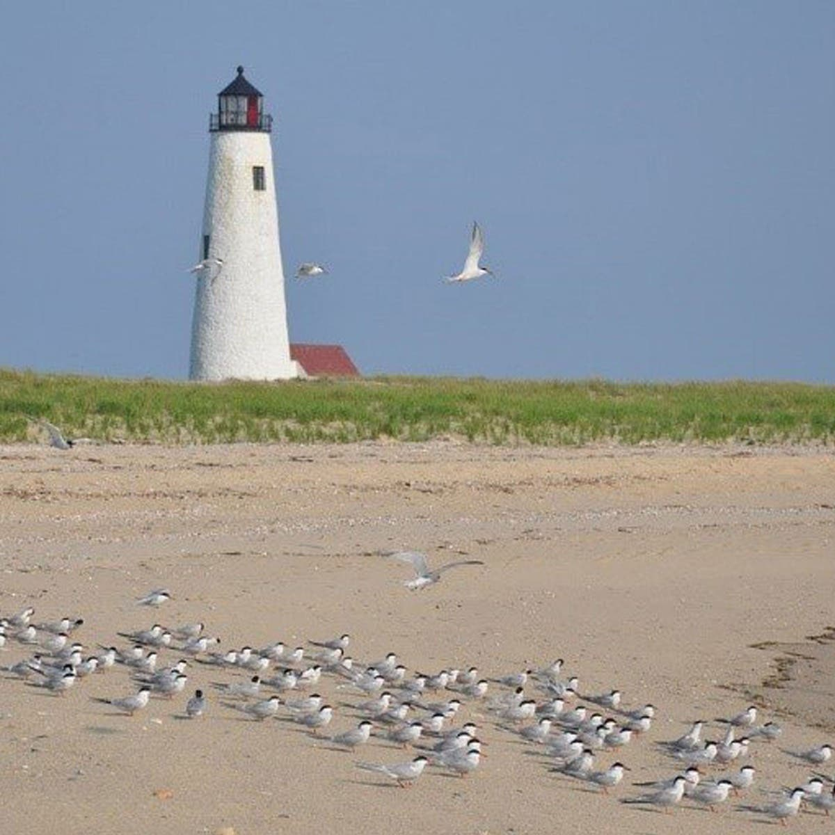 Nantucket Island, Massachusetts, USA