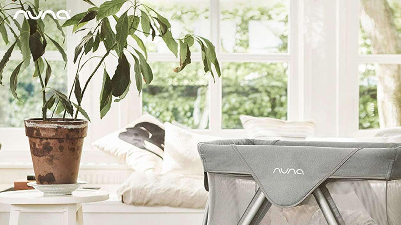 Nuna_Zoom-Background_a1.jpg
