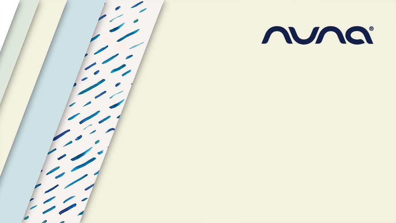 Nuna_Zoom-Background_b3.jpg